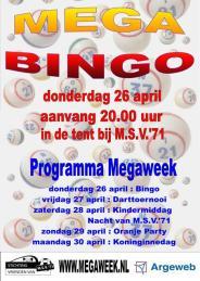 Affiche Bingo 2012 web